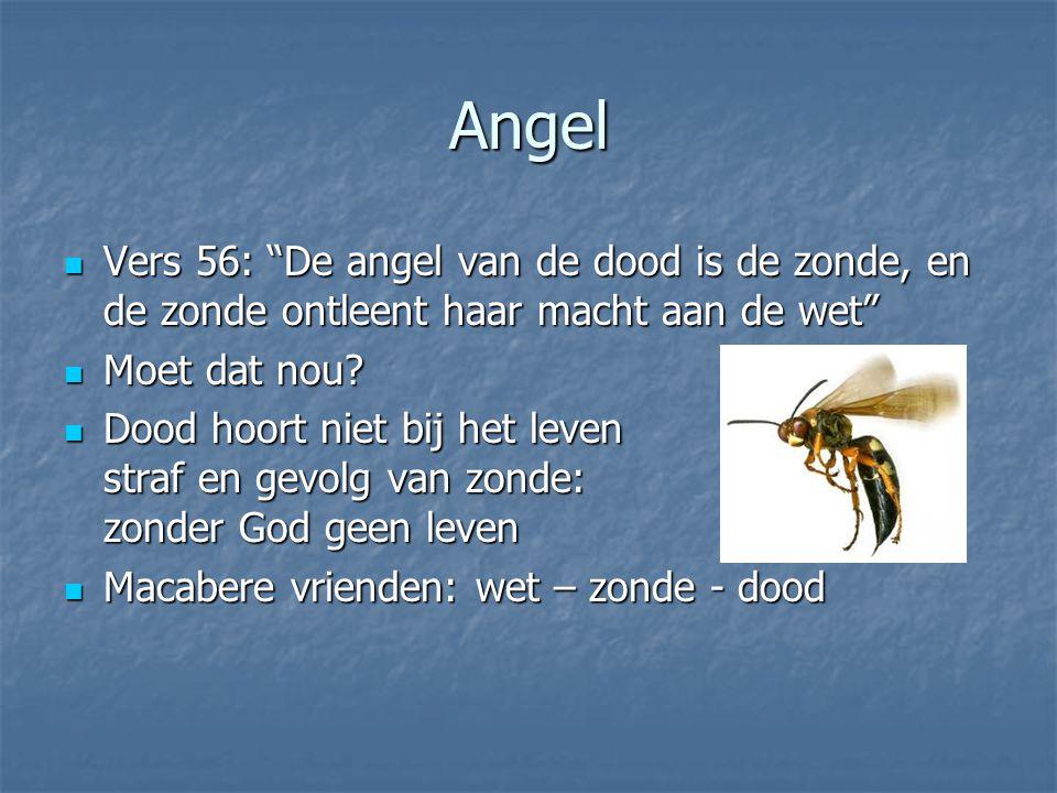 Angel Vers 56: De angel van de dood is de zonde, en de zonde ontleent haar macht aan de wet Vers 56: De angel van de dood is de zonde, en de zonde ontleent haar macht aan de wet Moet dat nou.