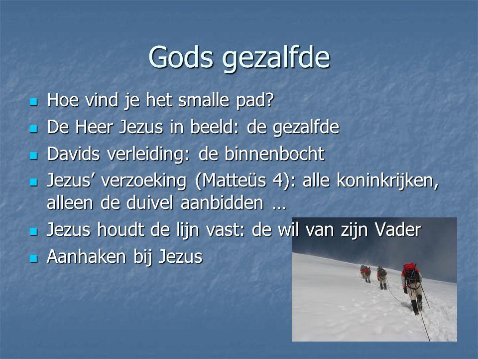 Gods gezalfde Hoe vind je het smalle pad? Hoe vind je het smalle pad? De Heer Jezus in beeld: de gezalfde De Heer Jezus in beeld: de gezalfde Davids v