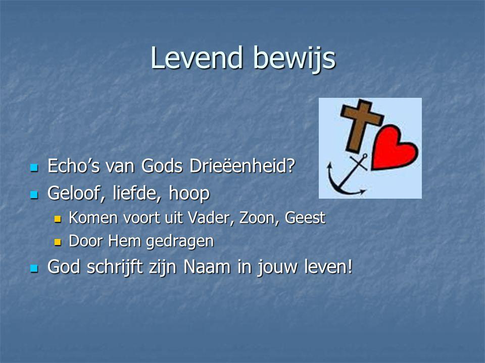 Levend bewijs Echo's van Gods Drieëenheid? Echo's van Gods Drieëenheid? Geloof, liefde, hoop Geloof, liefde, hoop Komen voort uit Vader, Zoon, Geest K