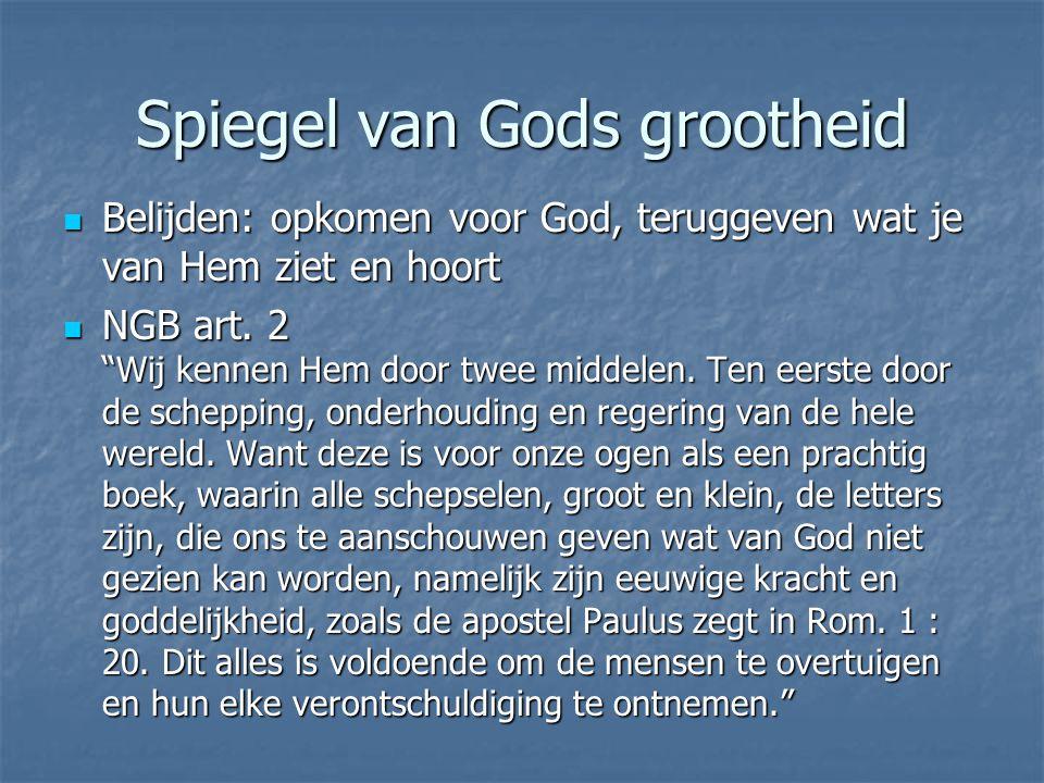 Spiegel van Gods grootheid Belijden: opkomen voor God, teruggeven wat je van Hem ziet en hoort Belijden: opkomen voor God, teruggeven wat je van Hem ziet en hoort NGB art.