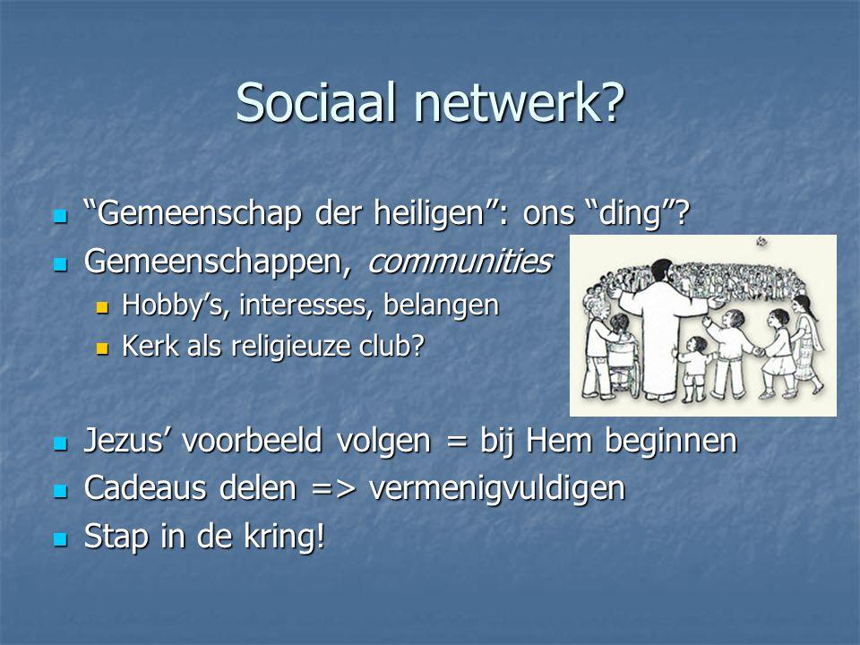 Sociaal netwerk. Gemeenschap der heiligen : ons ding .