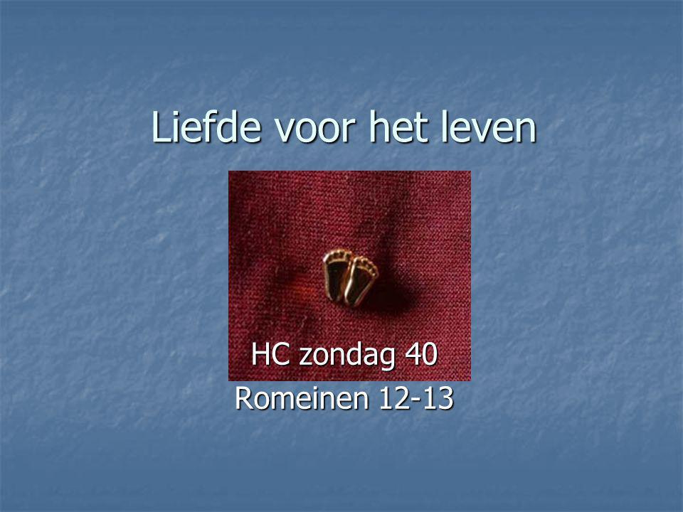 Liefde voor het leven HC zondag 40 Romeinen 12-13