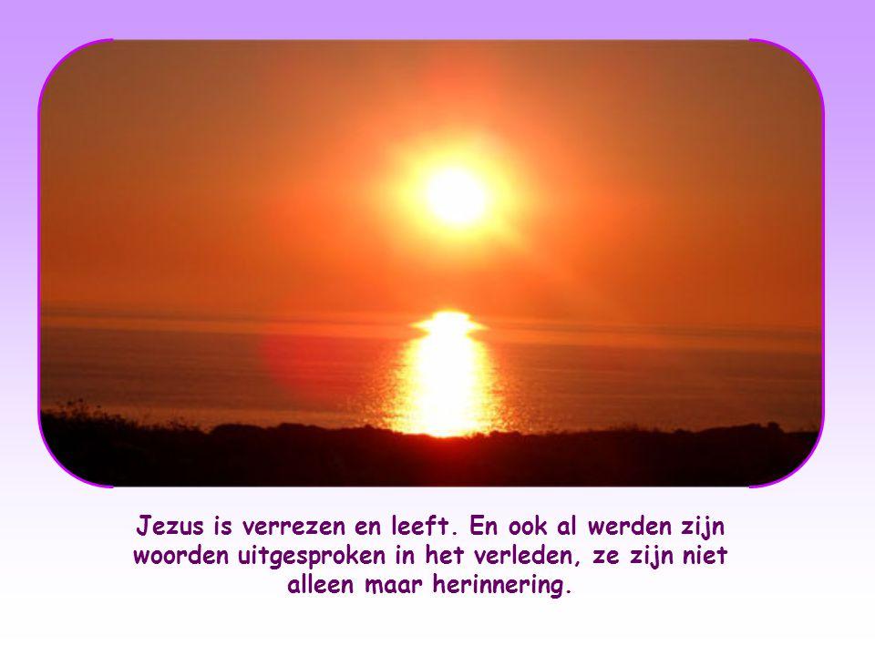 De woorden van Jezus zijn geest en leven, want ze komen van de hemel. Ze zijn een licht dat uit de hemel neerdaalt met de kracht van boven. Zijn woord