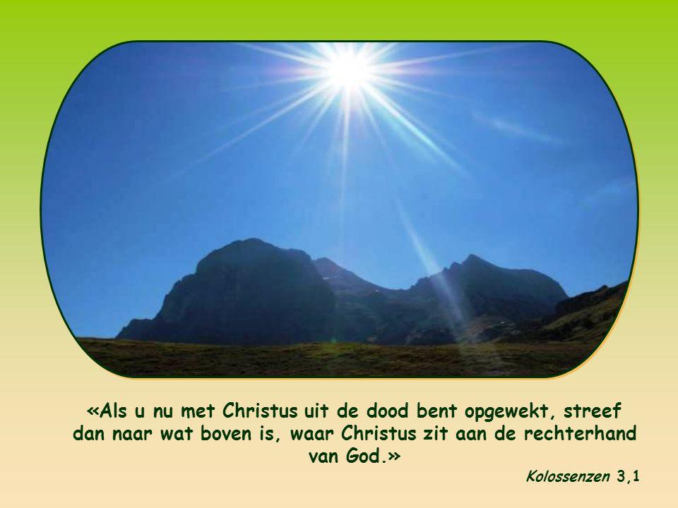 Van 15 tot 22 januari 2012 is er weer de Week van gebed voor de eenheid van de christenen.