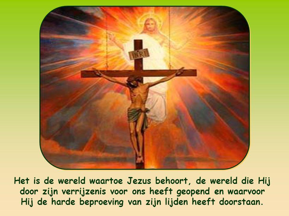 Het is de wereld waartoe Jezus behoort, de wereld die Hij door zijn verrijzenis voor ons heeft geopend en waarvoor Hij de harde beproeving van zijn lijden heeft doorstaan.
