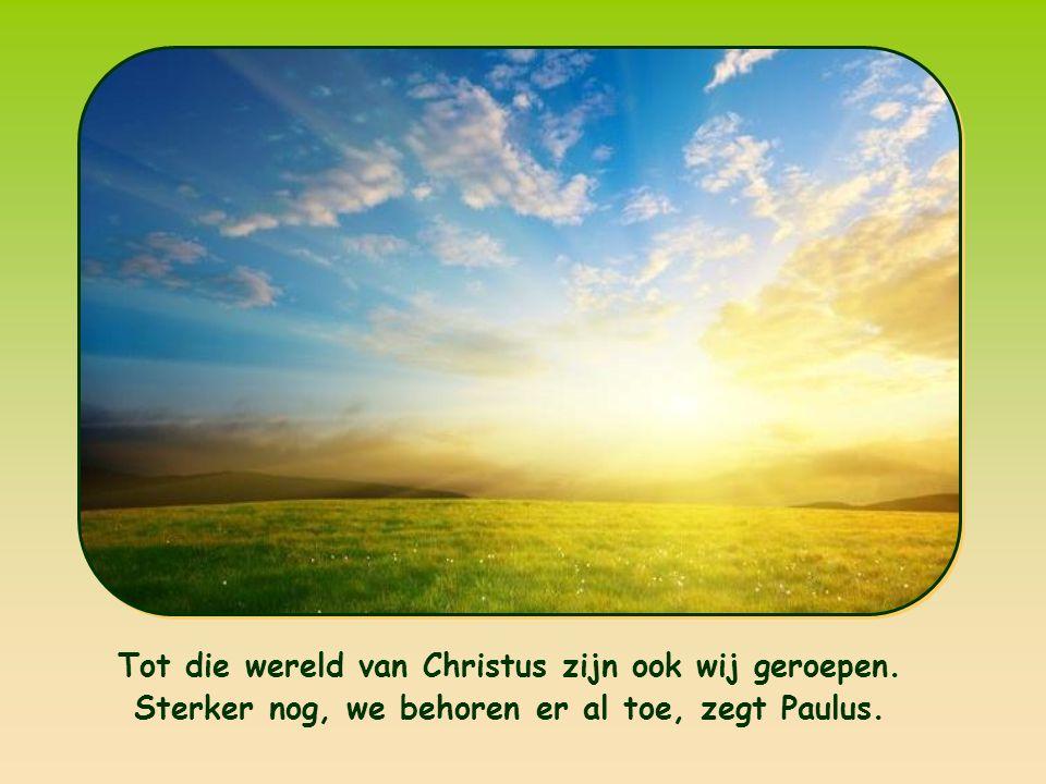 «Als u nu met Christus uit de dood bent opgewekt, streef dan naar wat boven is, waar Christus zit aan de rechterhand van God.» Kolossenzen 3,1
