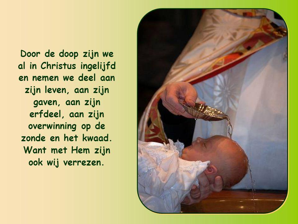 Door de doop zijn we al in Christus ingelijfd en nemen we deel aan zijn leven, aan zijn gaven, aan zijn erfdeel, aan zijn overwinning op de zonde en het kwaad.