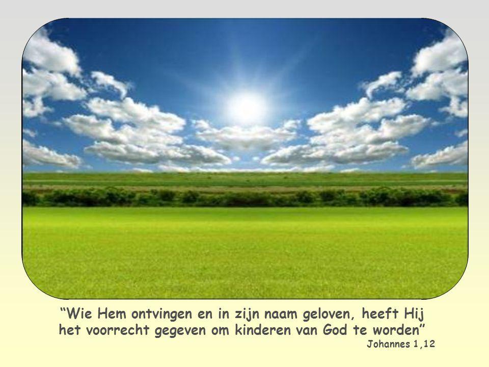 Daarom kunnen ook wij, net als Jezus, zeggen: Abba, Vader! , dat wil zeggen mijn pappa , mijn en onze Vader.