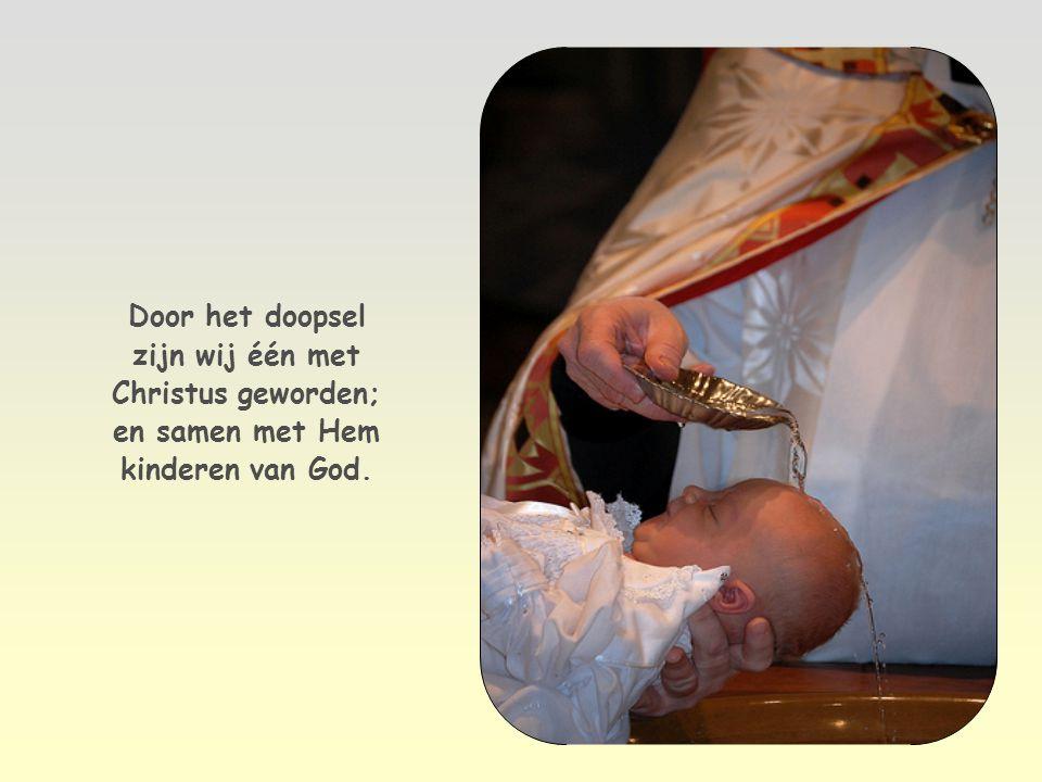 Wie Hem ontvingen en in zijn naam geloven, heeft Hij het voorrecht gegeven om kinderen van God te worden Johannes 1,12