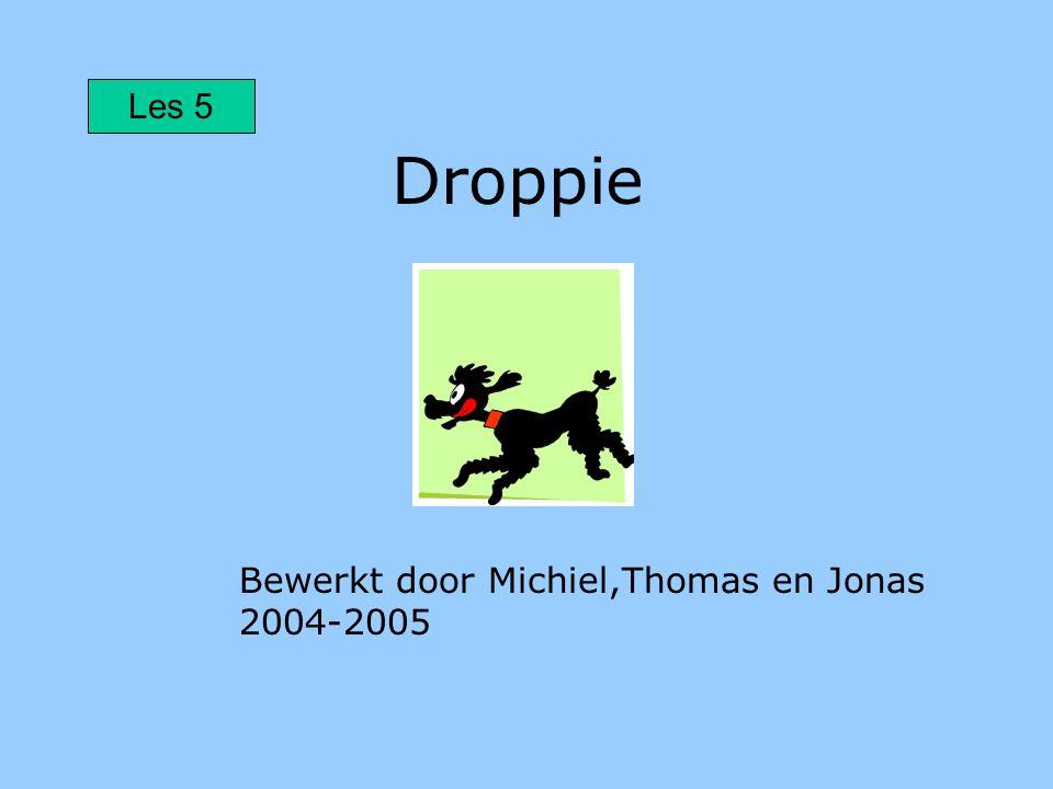 Droppie Bewerkt door Michiel,Thomas en Jonas 2004-2005 Les 5