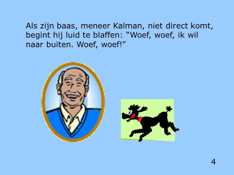 Als zijn baas, meneer Kalman, niet direct komt, begint hij luid te blaffen: Woef, woef, ik wil naar buiten.
