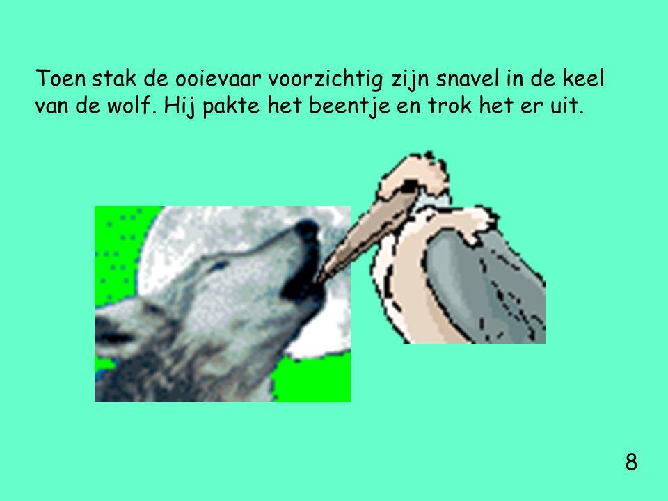 Toen stak de ooievaar voorzichtig zijn snavel in de keel van de wolf. Hij pakte het beentje en trok het er uit. 8