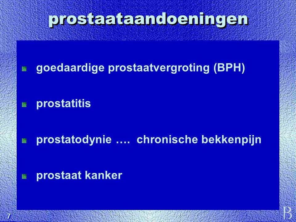 7 7 prostaataandoeningen goedaardige prostaatvergroting (BPH) prostatitis prostatodynie …. chronische bekkenpijn prostaat kanker