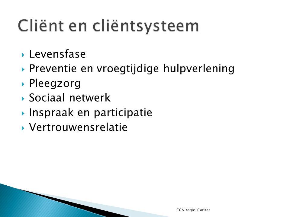  Levensfase  Preventie en vroegtijdige hulpverlening  Pleegzorg  Sociaal netwerk  Inspraak en participatie  Vertrouwensrelatie CCV regio Caritas