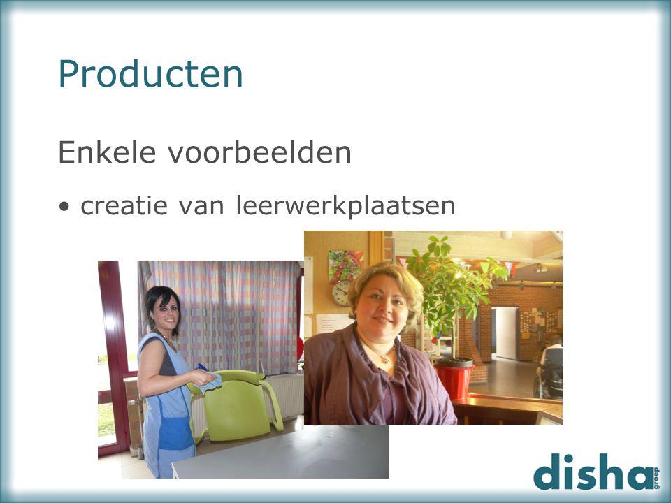 Producten Enkele voorbeelden creatie van leerwerkplaatsen
