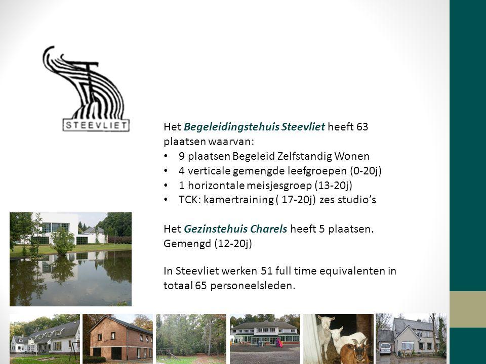 Het Begeleidingstehuis Steevliet heeft 63 plaatsen waarvan: 9 plaatsen Begeleid Zelfstandig Wonen 4 verticale gemengde leefgroepen (0-20j) 1 horizontale meisjesgroep (13-20j) TCK: kamertraining ( 17-20j) zes studio's Het Gezinstehuis Charels heeft 5 plaatsen.