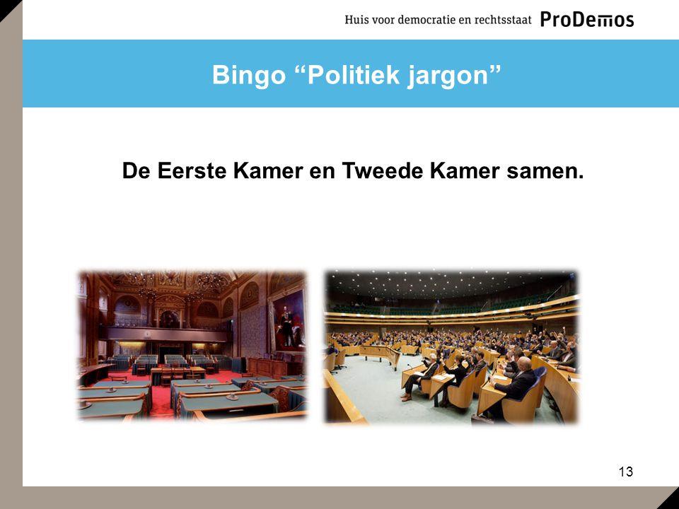 """13 Bingo """"Politiek jargon"""" De Eerste Kamer en Tweede Kamer samen."""