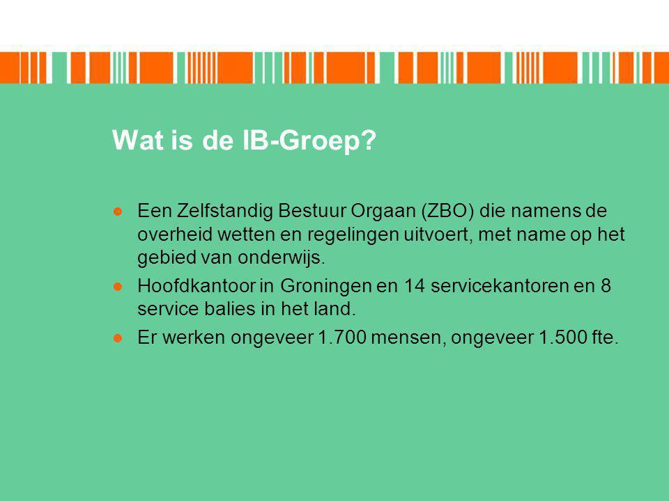 Wat doet de IB-Groep.