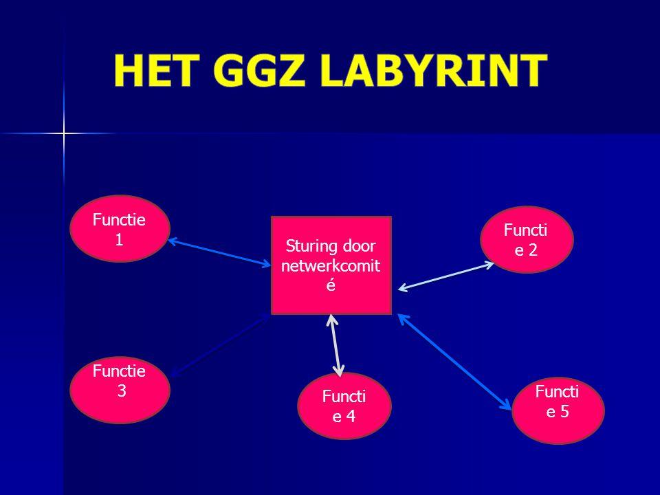 Sturing door netwerkcomit é Functie 1 Functi e 2 Functie 3 Functi e 5 Functi e 4