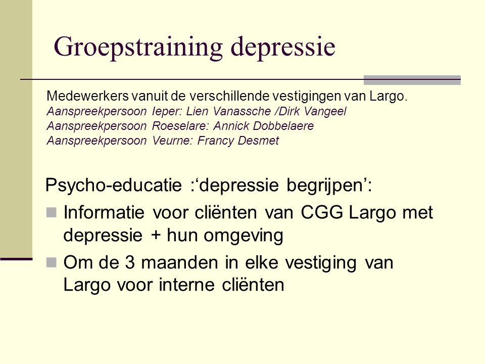 Psycho-educatie :'depressie begrijpen': Informatie voor cliënten van CGG Largo met depressie + hun omgeving Om de 3 maanden in elke vestiging van Largo voor interne cliënten Medewerkers vanuit de verschillende vestigingen van Largo.