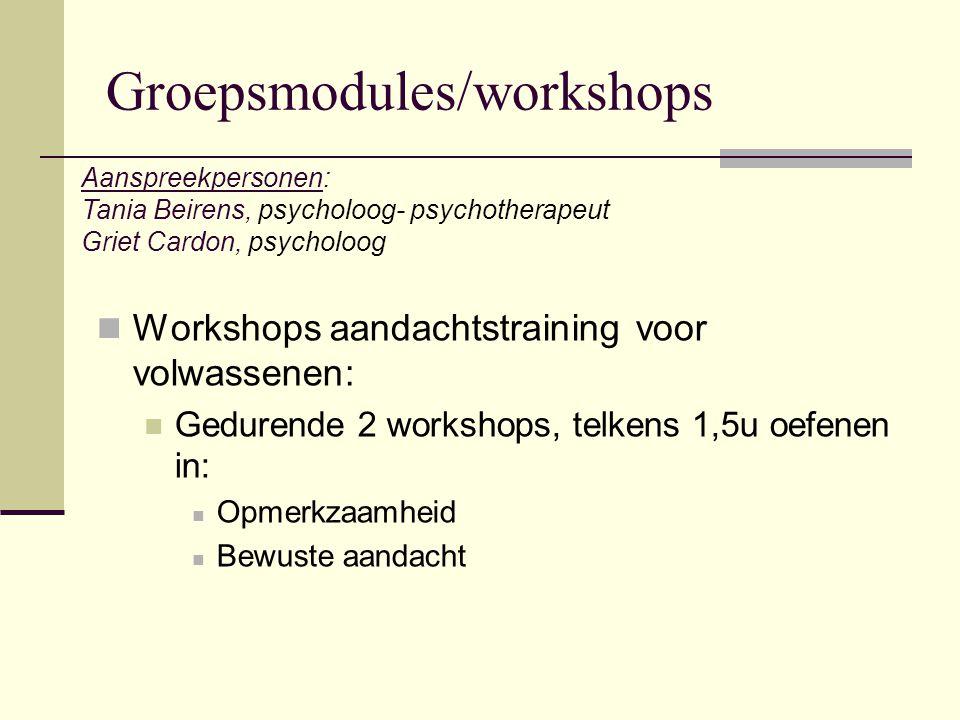 Groepsmodules/workshops Workshops aandachtstraining voor volwassenen: Gedurende 2 workshops, telkens 1,5u oefenen in: Opmerkzaamheid Bewuste aandacht