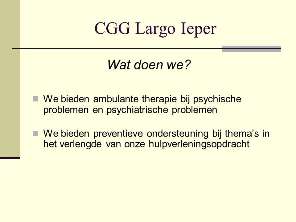 CGG Largo Ieper Wat doen we? We bieden ambulante therapie bij psychische problemen en psychiatrische problemen We bieden preventieve ondersteuning bij