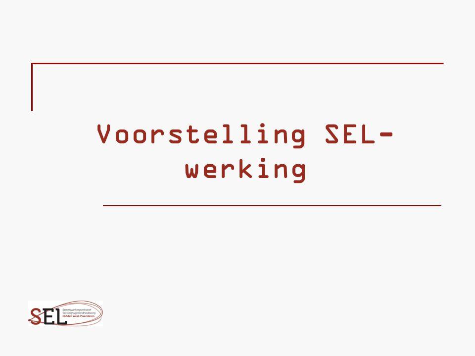 Voorstelling SEL- werking