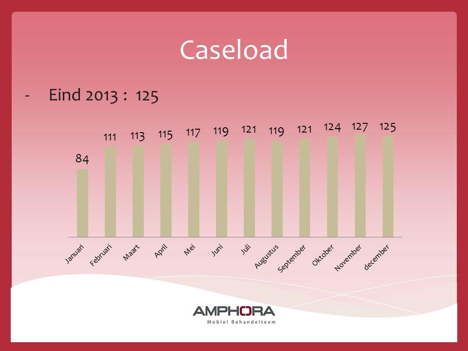Caseload -Eind 2013 : 125