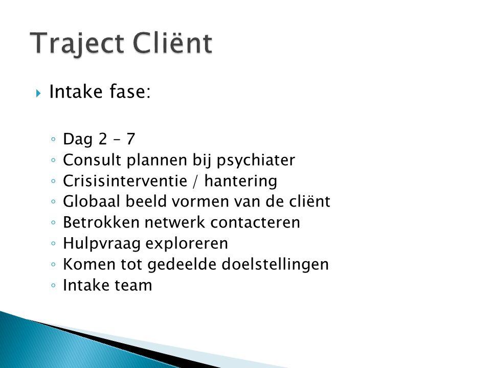  Intake fase: ◦ Dag 2 – 7 ◦ Consult plannen bij psychiater ◦ Crisisinterventie / hantering ◦ Globaal beeld vormen van de cliënt ◦ Betrokken netwerk contacteren ◦ Hulpvraag exploreren ◦ Komen tot gedeelde doelstellingen ◦ Intake team