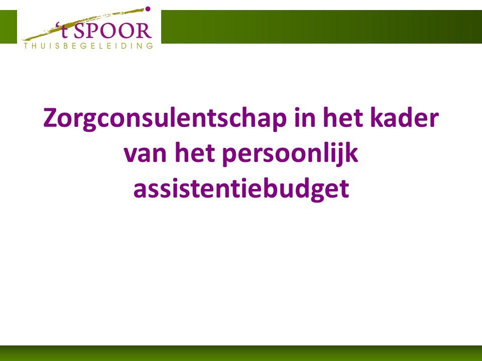 Zorgconsulentschap in het kader van het persoonlijk assistentiebudget