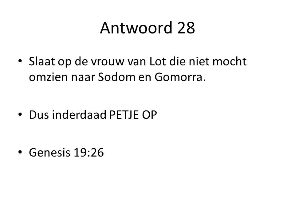 Antwoord 28 Slaat op de vrouw van Lot die niet mocht omzien naar Sodom en Gomorra.