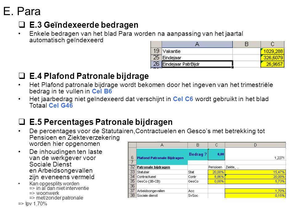 E. Para  E.3 Geïndexeerde bedragen Enkele bedragen van het blad Para worden na aanpassing van het jaartal automatisch geïndexeerd  E.4 Plafond Patro