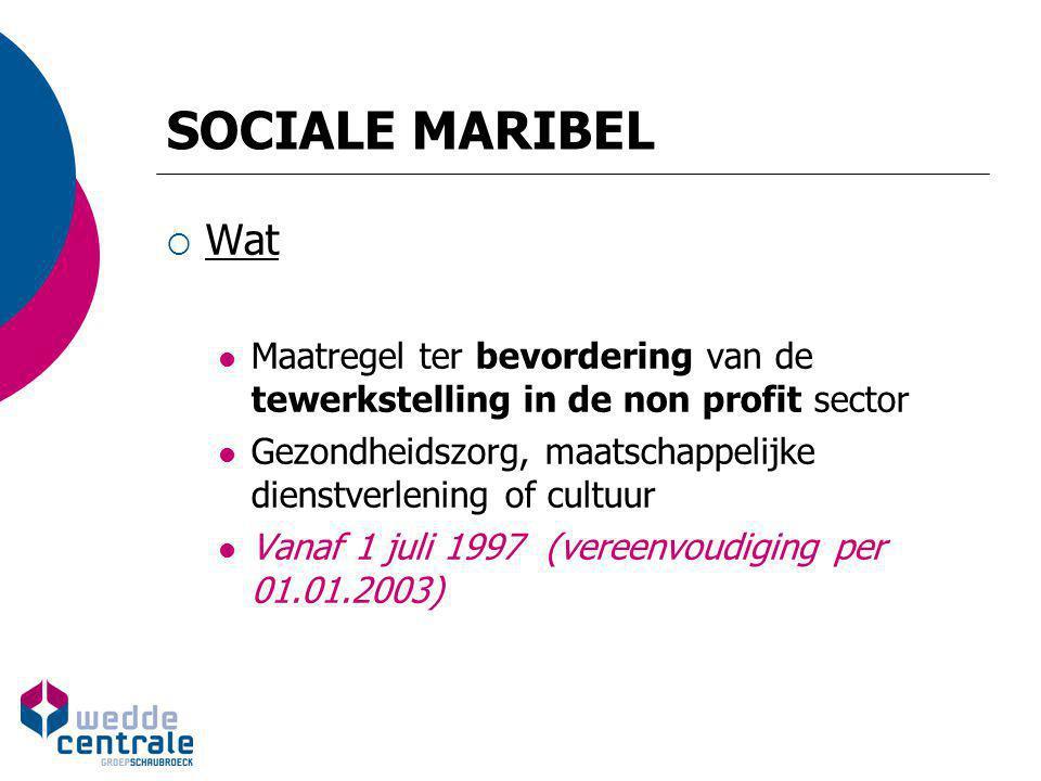SOCIALE MARIBEL  Wat Maatregel ter bevordering van de tewerkstelling in de non profit sector Gezondheidszorg, maatschappelijke dienstverlening of cul