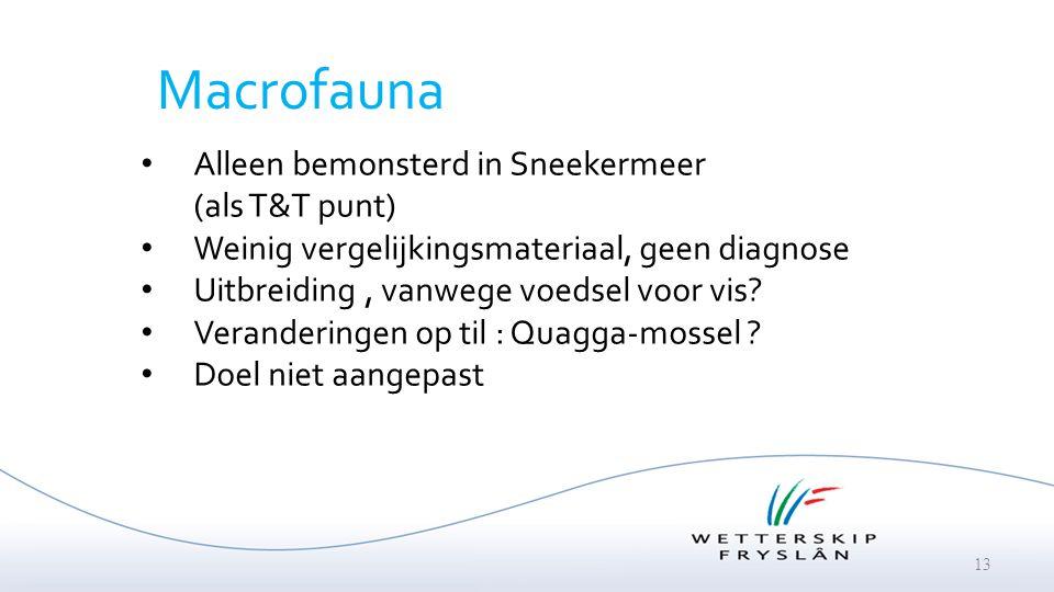 13 Macrofauna Alleen bemonsterd in Sneekermeer (als T&T punt) Weinig vergelijkingsmateriaal, geen diagnose Uitbreiding, vanwege voedsel voor vis? Vera