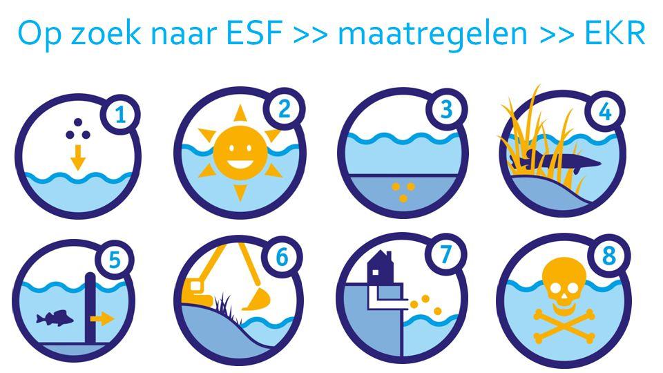 25 Op zoek naar ESF >> maatregelen >> EKR