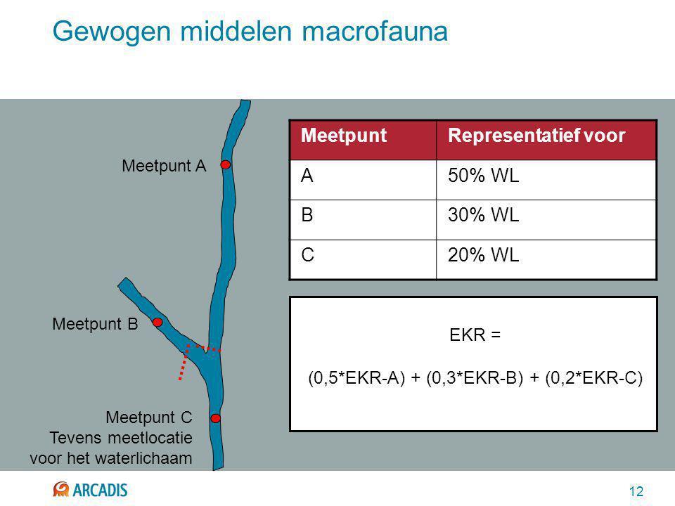 12 Gewogen middelen macrofauna Meetpunt A Meetpunt B Meetpunt C Tevens meetlocatie voor het waterlichaam EKR = (0,5*EKR-A) + (0,3*EKR-B) + (0,2*EKR-C) MeetpuntRepresentatief voor A50% WL B30% WL C20% WL