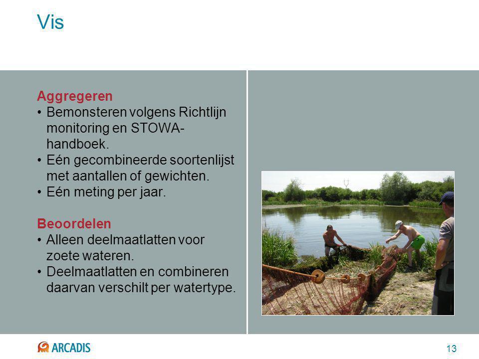 13 Vis Aggregeren Bemonsteren volgens Richtlijn monitoring en STOWA- handboek. Eén gecombineerde soortenlijst met aantallen of gewichten. Eén meting p