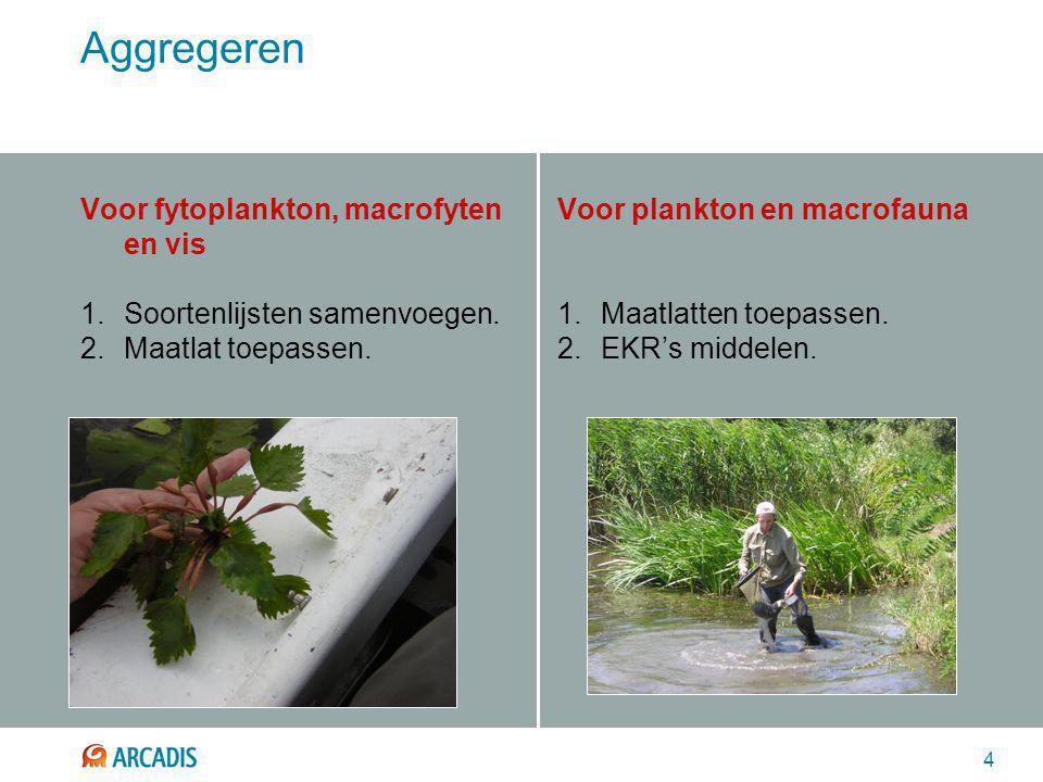 4 Aggregeren Voor fytoplankton, macrofyten en vis 1.Soortenlijsten samenvoegen. 2.Maatlat toepassen. Voor plankton en macrofauna 1.Maatlatten toepasse