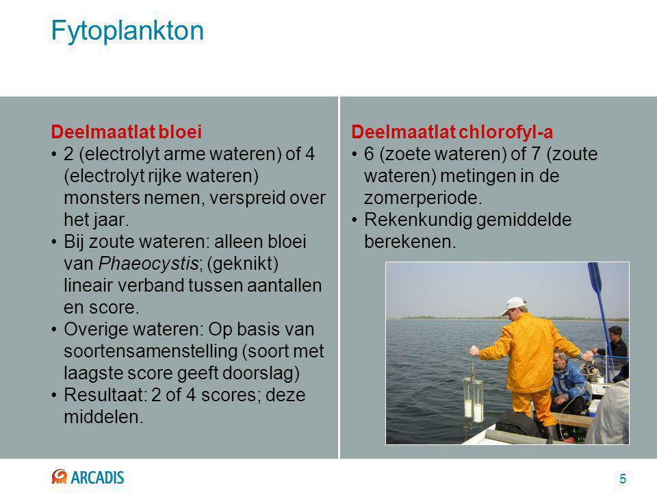 5 Fytoplankton Deelmaatlat bloei 2 (electrolyt arme wateren) of 4 (electrolyt rijke wateren) monsters nemen, verspreid over het jaar. Bij zoute watere