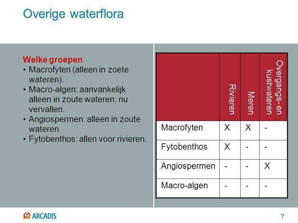 7 Overige waterflora Welke groepen Macrofyten (alleen in zoete wateren). Macro-algen: aanvankelijk alleen in zoute wateren; nu vervallen. Angiospermen