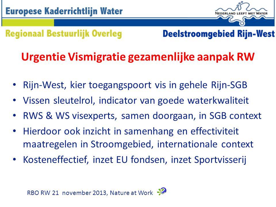 Urgentie Vismigratie gezamenlijke aanpak RW Rijn-West, kier toegangspoort vis in gehele Rijn-SGB Vissen sleutelrol, indicator van goede waterkwaliteit RWS & WS visexperts, samen doorgaan, in SGB context Hierdoor ook inzicht in samenhang en effectiviteit maatregelen in Stroomgebied, internationale context Kosteneffectief, inzet EU fondsen, inzet Sportvisserij RBO RW 21 november 2013, Nature at Work