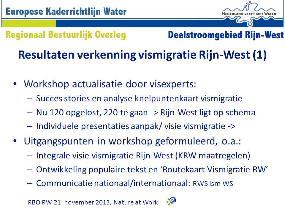 Resultaten verkenning vismigratie Rijn-West (1) Workshop actualisatie door visexperts: – Succes stories en analyse knelpuntenkaart vismigratie – Nu 120 opgelost, 220 te gaan -> Rijn-West ligt op schema – Individuele presentaties aanpak/ visie vismigratie -> Uitgangspunten in workshop geformuleerd, o.a.: – Integrale visie vismigratie Rijn-West (KRW maatregelen) – Ontwikkeling populaire tekst en 'Routekaart Vismigratie RW' – Communicatie nationaal/internationaal: RWS ism WS RBO RW 21 november 2013, Nature at Work