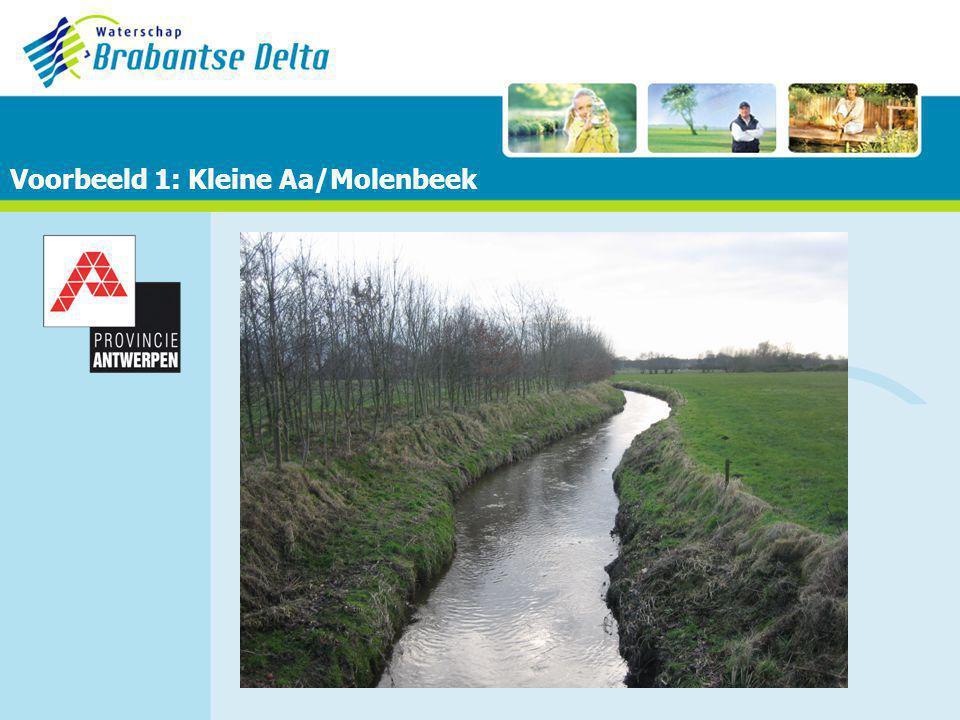 Voorbeeld 1: Kleine Aa/Molenbeek