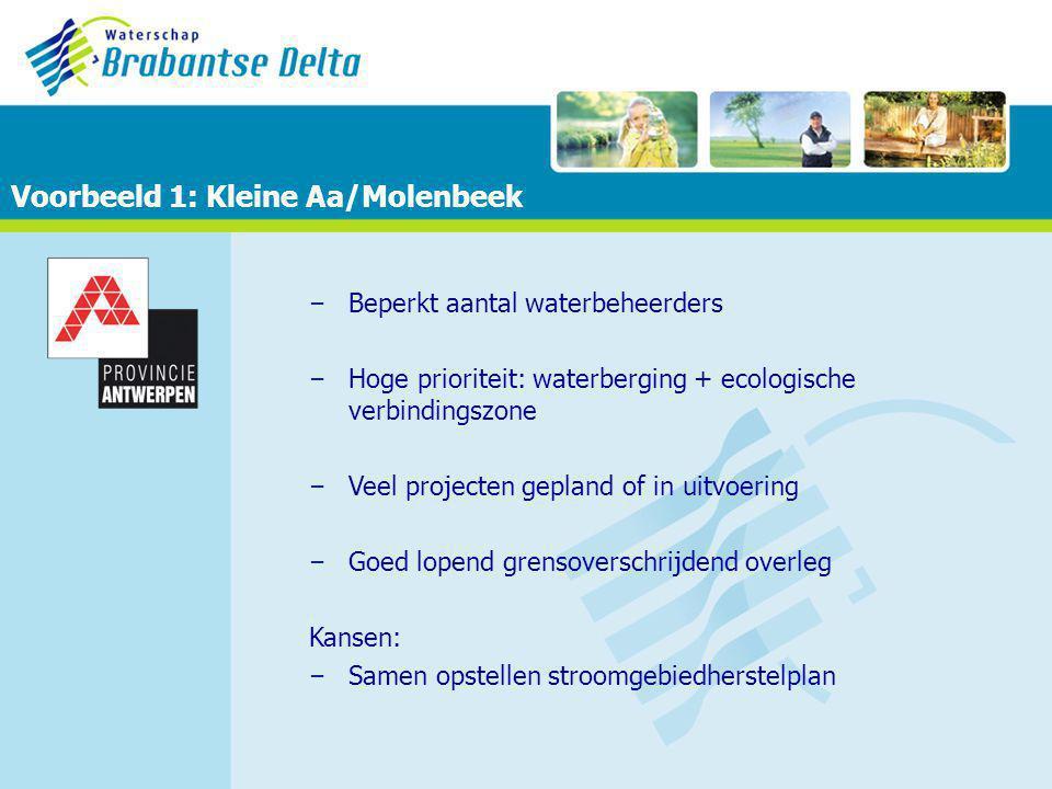 – Beperkt aantal waterbeheerders – Hoge prioriteit: waterberging + ecologische verbindingszone – Veel projecten gepland of in uitvoering – Goed lopend grensoverschrijdend overleg Kansen: – Samen opstellen stroomgebiedherstelplan