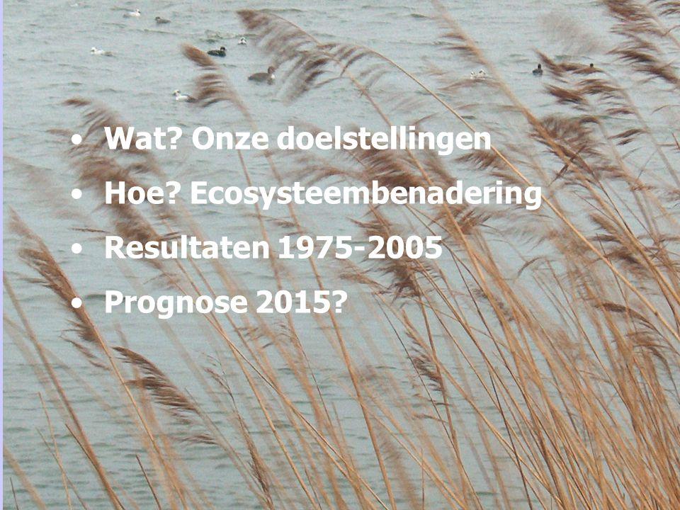 Wat? Onze doelstellingen Hoe? Ecosysteembenadering Resultaten 1975-2005 Prognose 2015?