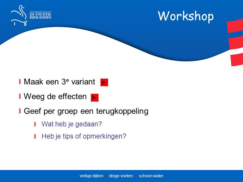 Workshop Maak een 3 e variant Weeg de effecten Geef per groep een terugkoppeling Wat heb je gedaan.