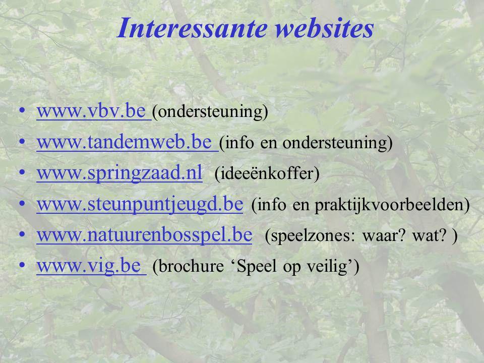 Interessante websites www.vbv.be (ondersteuning) www.tandemweb.be (info en ondersteuning) www.springzaad.nl (ideeënkoffer) www.steunpuntjeugd.be (info en praktijkvoorbeelden) www.natuurenbosspel.be (speelzones: waar.