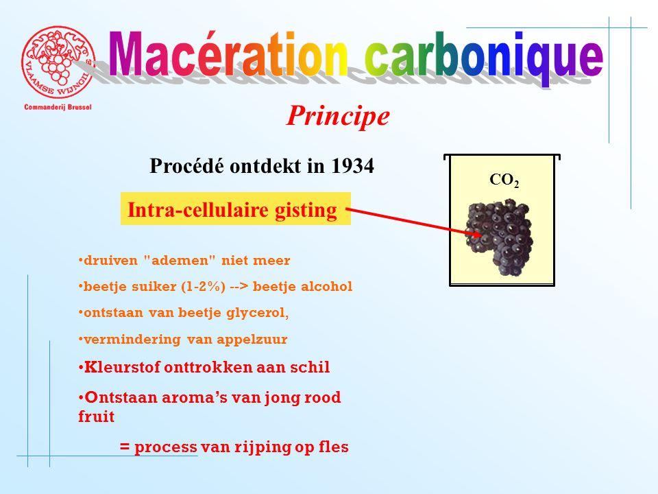 CO 2 Intra-cellulaire gisting druiven ademen niet meer beetje suiker (1-2%) --> beetje alcohol ontstaan van beetje glycerol, vermindering van appelzuur Kleurstof onttrokken aan schil Ontstaan aroma's van jong rood fruit = process van rijping op fles Procédé ontdekt in 1934 Principe