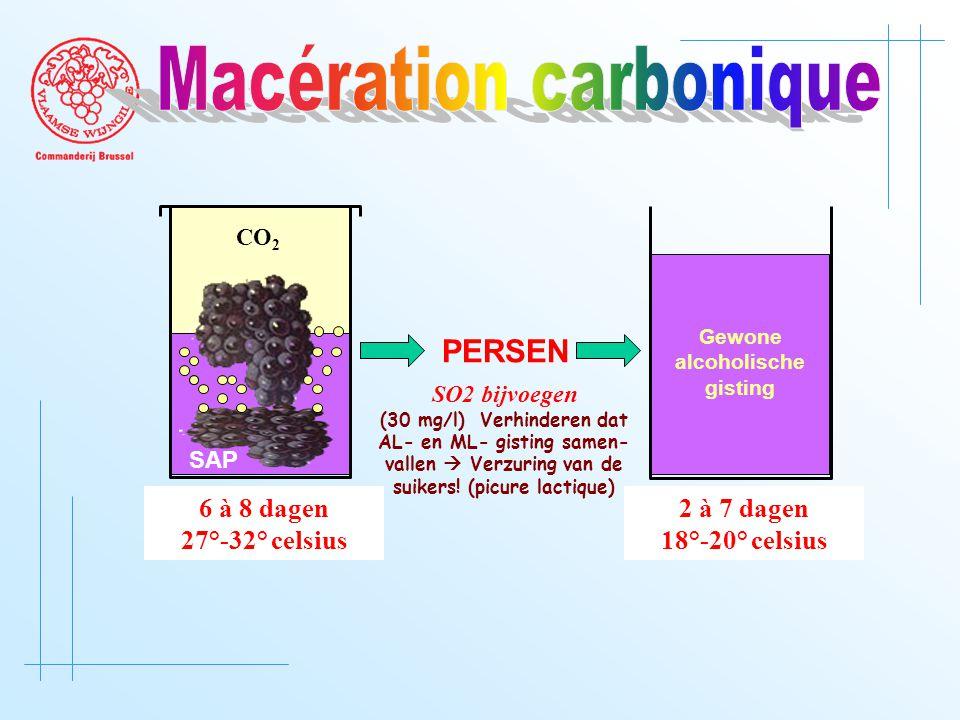 CO 2 SAP 6 à 8 dagen 27°-32° celsius PERSEN 2 à 7 dagen 18°-20° celsius Gewone alcoholische gisting SO2 bijvoegen (30 mg/l) Verhinderen dat AL- en ML- gisting samen- vallen  Verzuring van de suikers.