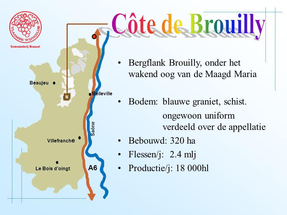 A6 Saône Belleville Le Bois d'oingt Villefranch e Beaujeu Bergflank Brouilly, onder het wakend oog van de Maagd Maria Bodem: blauwe graniet, schist.